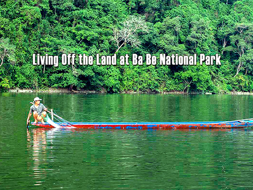 Living Off the Land at Ba Be National Park
